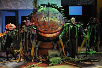 Der kleine Horrorladen, Musical - Benjamin Geipel als Audrey II